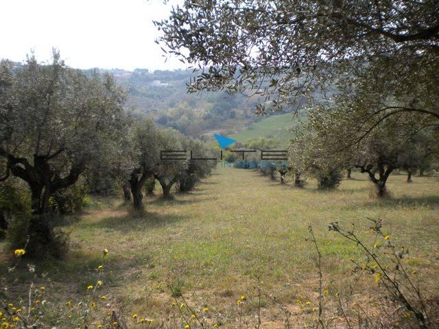 Terreno Agricolo in vendita a Montesilvano, 9999 locali, zona Località: Colli, prezzo € 150.000 | Cambiocasa.it