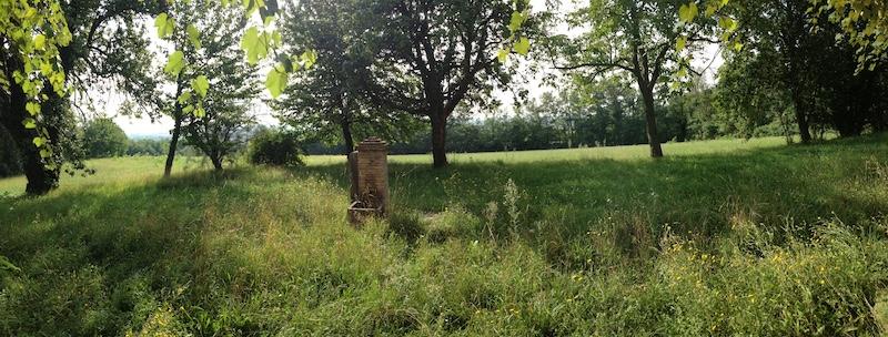 Rustico / Casale in vendita a Nervesa della Battaglia, 10 locali, zona Zona: Bavaria, prezzo € 350.000 | CambioCasa.it