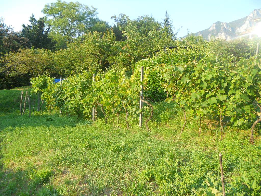 Terreno Edificabile Residenziale in Vendita a Lecco