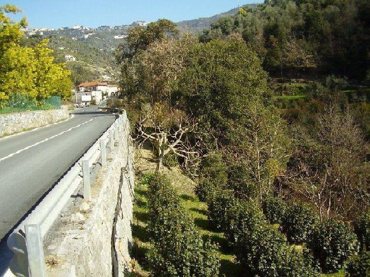Terreno Edificabile Residenziale in vendita a Perinaldo, 9999 locali, prezzo € 20.000 | CambioCasa.it