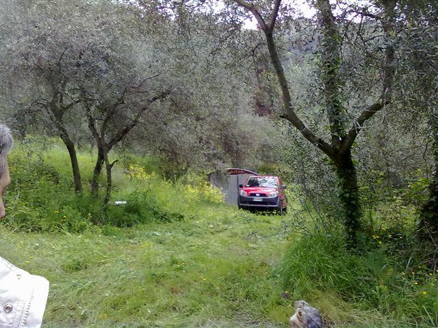 Terreno Agricolo in vendita a Perinaldo, 9999 locali, prezzo € 140.000 | CambioCasa.it