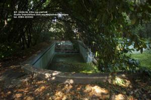 Villa di prestigio in Vendita a Viareggio