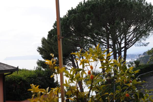 Bilocale Varazze Via Dei Gerani 1