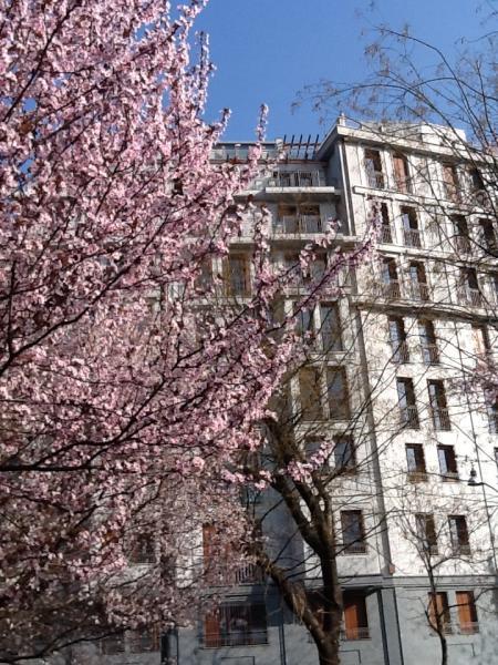 Appartamento in Vendita a Milano via giorgio pallavicino