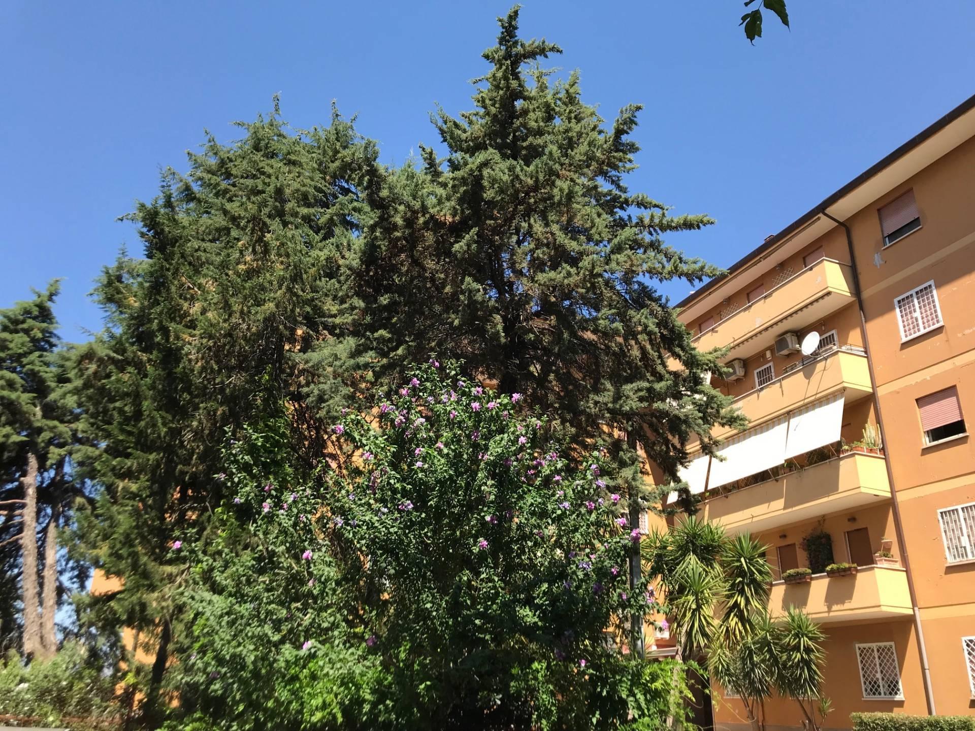 Appartamento in Vendita a Roma: 3 locali, 85 mq
