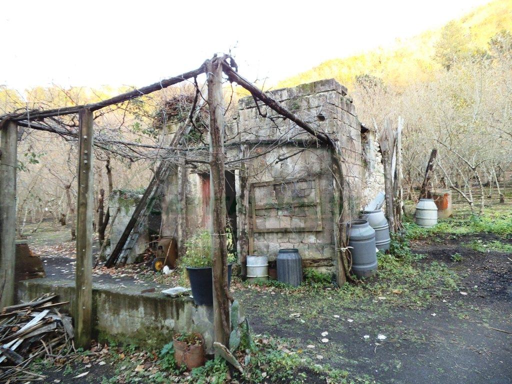 Terreno Agricolo in Vendita a Mugnano del Cardinale