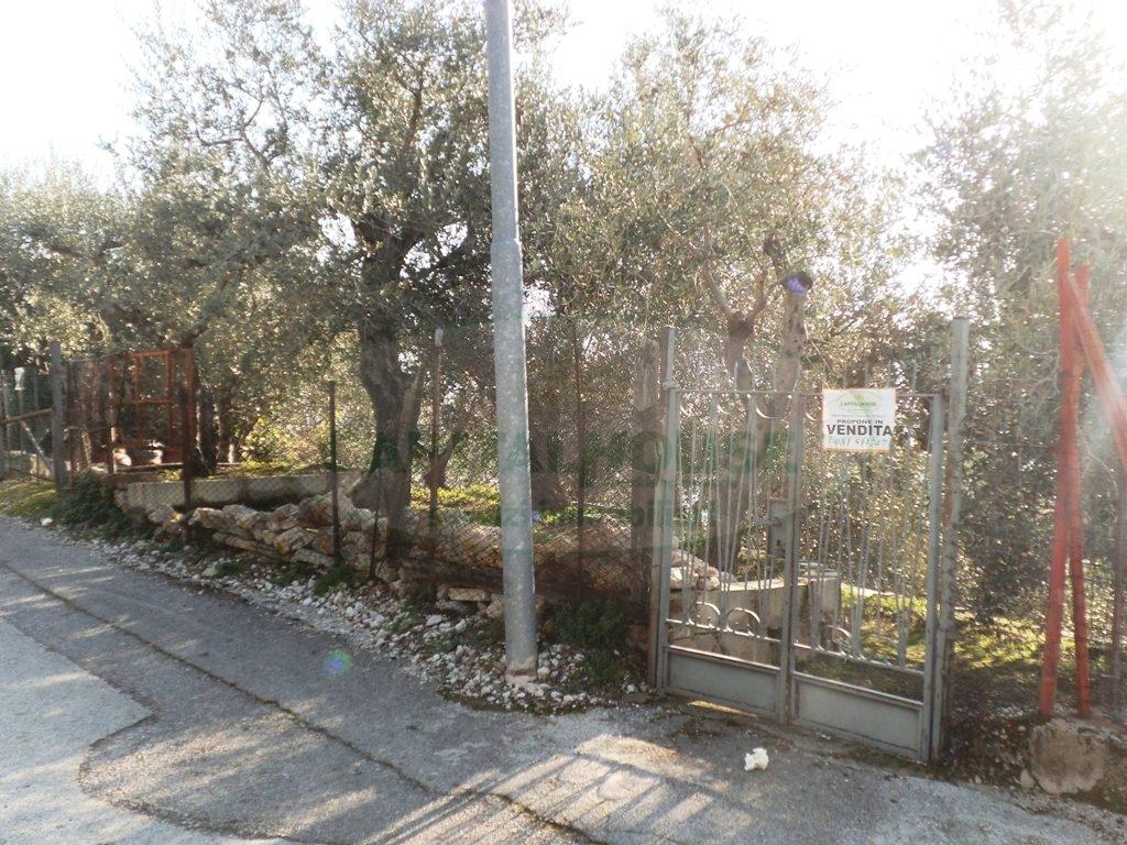 Terreno Agricolo in vendita a Sirignano, 9999 locali, prezzo € 30.000 | Cambio Casa.it