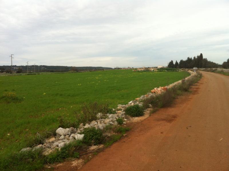 Vendita terreno edificabile Lecce