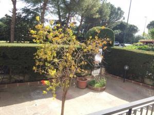 Vai alla scheda: Appartamento Vendita - Lecce (LE) | Borgo S. Nicola - Codice 03 SR