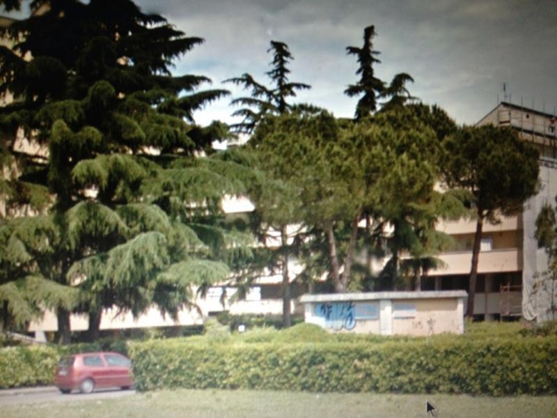Bilocale Pisa Via San Biagio 4