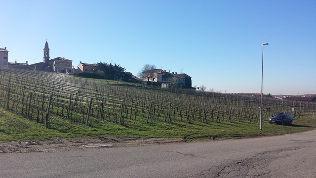 Terreno Agricolo in vendita a Soave, 9999 locali, prezzo € 240.000   CambioCasa.it