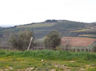 Terreno Edificabile Residenziale in vendita a Lavagno, 9999 locali, zona Località: SanBriccio, prezzo € 235.000 | Cambio Casa.it