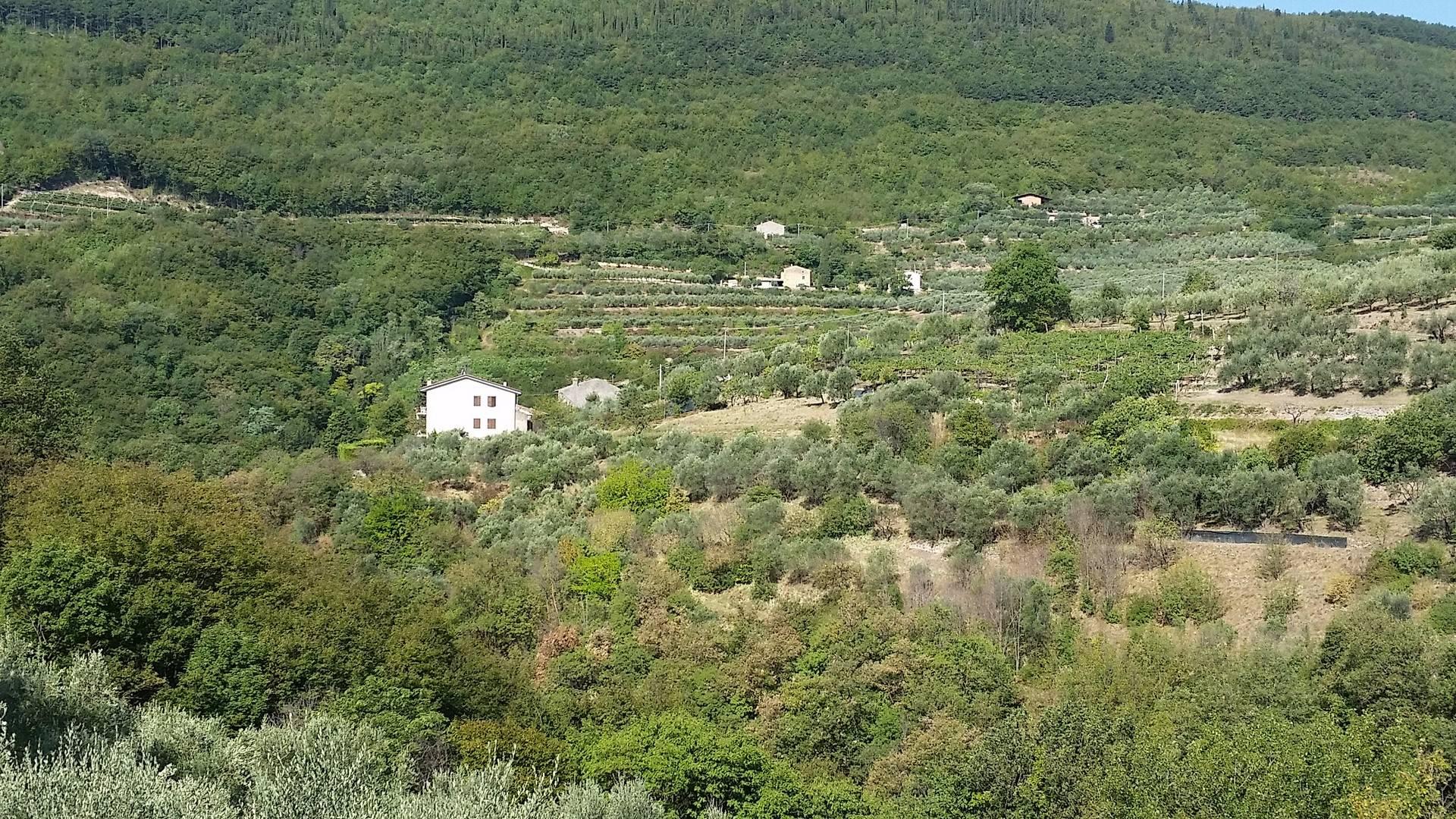 Terreno Agricolo in vendita a Cazzano di Tramigna, 9999 locali, prezzo € 60.000 | CambioCasa.it