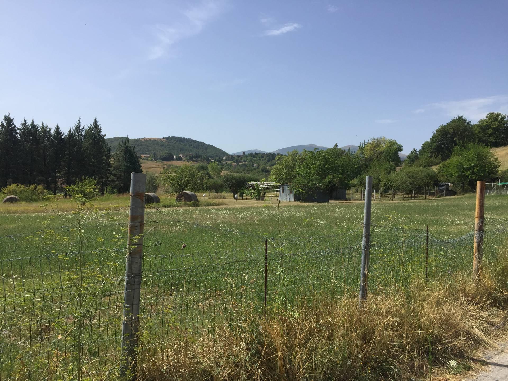 Terreno Edificabile Residenziale in Vendita a Fabriano