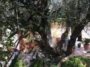 Bilocale Toritto S.p. Toritto - Quasano 10