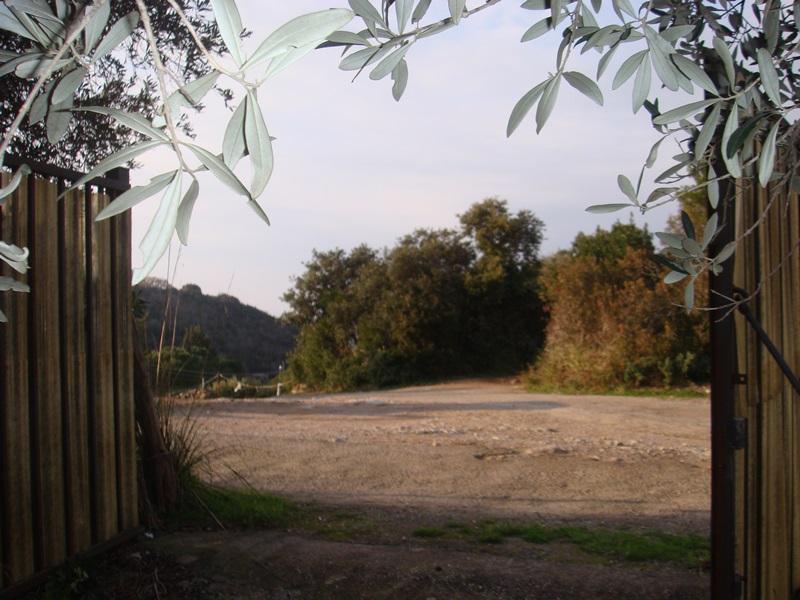 Terreno Agricolo in vendita a Monte Argentario, 9999 locali, zona Località: PortoS.oStefano, prezzo € 65.000   Cambio Casa.it