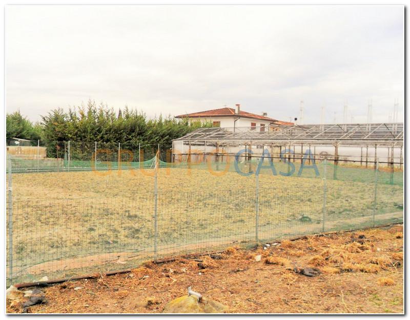 Terreno Agricolo in vendita a Pescia, 9999 locali, zona Località: Centro, prezzo € 135.000 | Cambio Casa.it