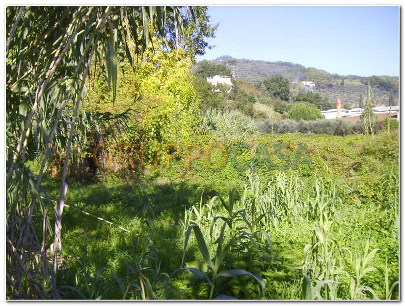 Terreno Edificabile Residenziale in vendita a Buggiano, 9999 locali, zona Località: Stignano, prezzo € 100.000 | Cambio Casa.it