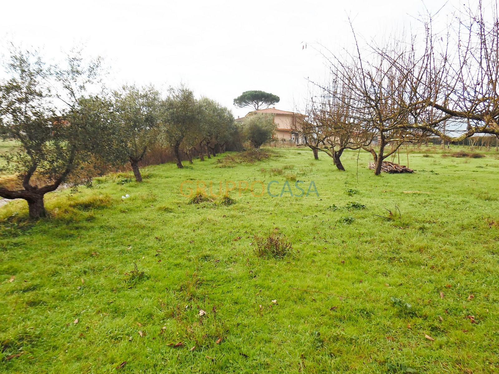 Terreno Agricolo in vendita a Castelfranco di Sotto, 9999 locali, zona Zona: Orentano, prezzo € 8.000 | Cambio Casa.it