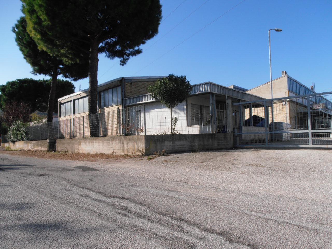 Capannone in affitto a Ascoli Piceno, 9999 locali, prezzo € 600 | Cambio Casa.it