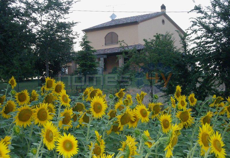 Soluzione Indipendente in vendita a Mondavio, 6 locali, prezzo € 390.000 | Cambio Casa.it