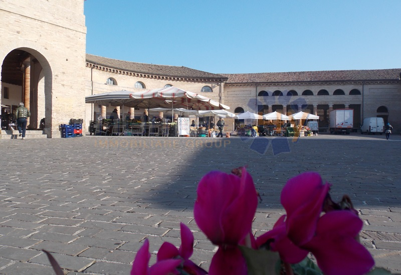 Bilocale Senigallia Via Beccaria 8