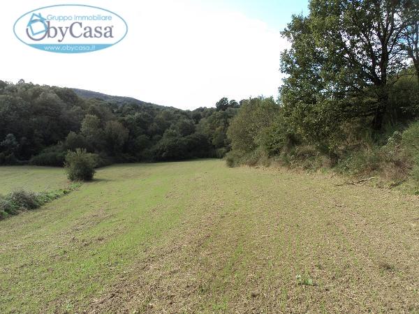 Terreno Agricolo in vendita a Oriolo Romano, 9999 locali, prezzo € 11.000 | CambioCasa.it