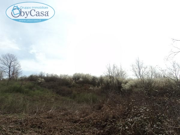 Terreno Agricolo in vendita a Oriolo Romano, 9999 locali, prezzo € 12.000 | CambioCasa.it