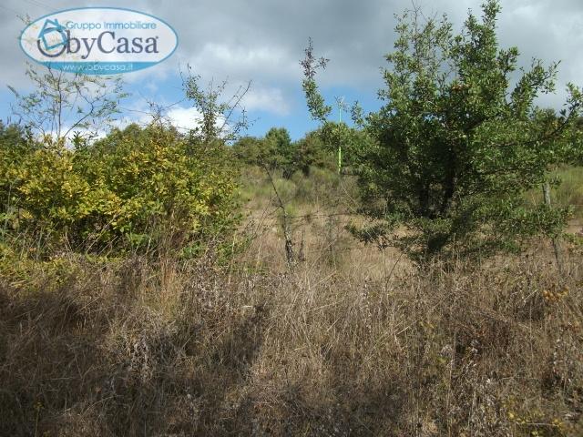 Terreno Agricolo in vendita a Canale Monterano, 9999 locali, zona Zona: Stigliano, prezzo € 18.000 | CambioCasa.it