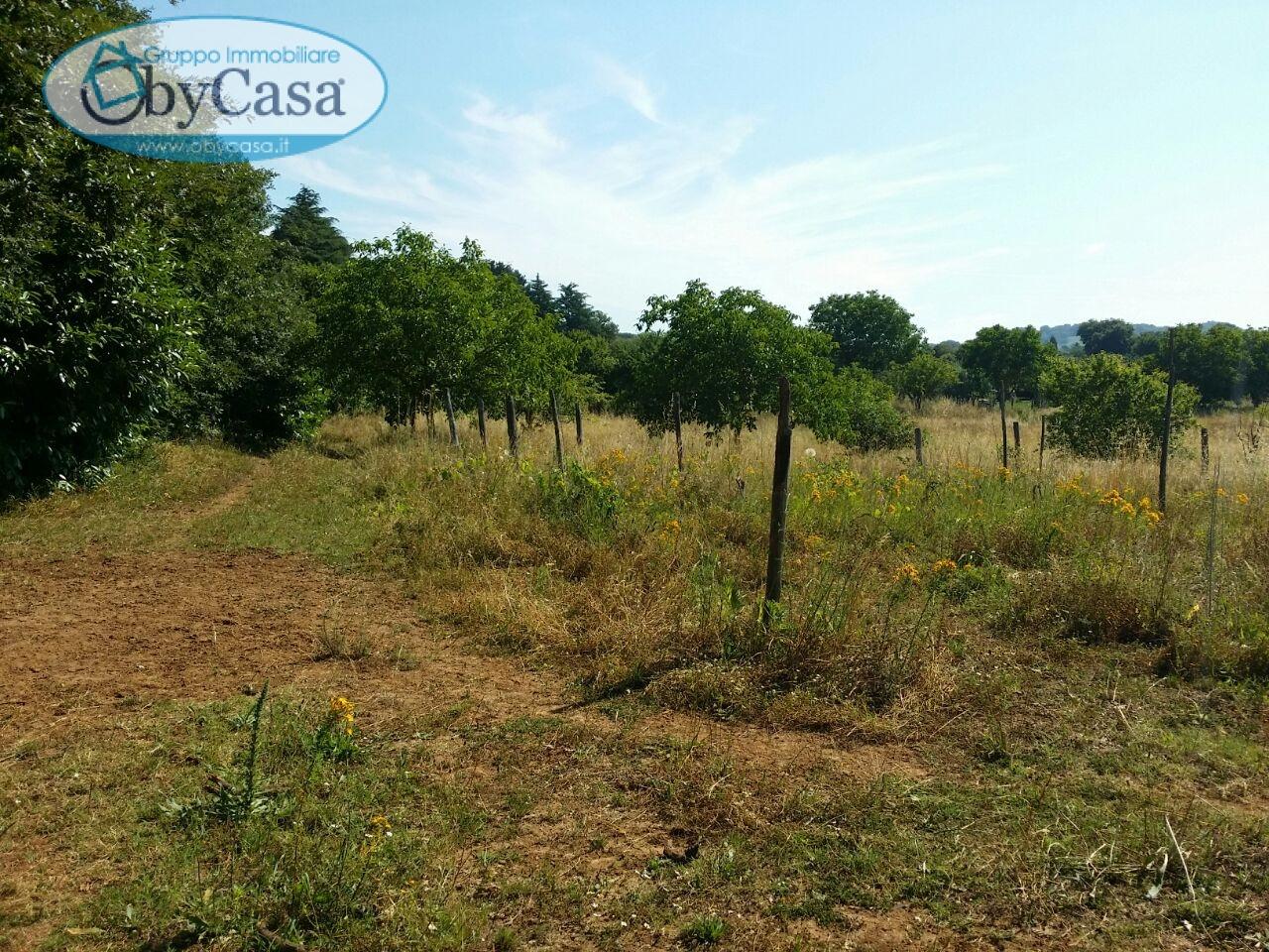 Terreno Agricolo in vendita a Manziana, 9999 locali, prezzo € 235.000 | Cambio Casa.it