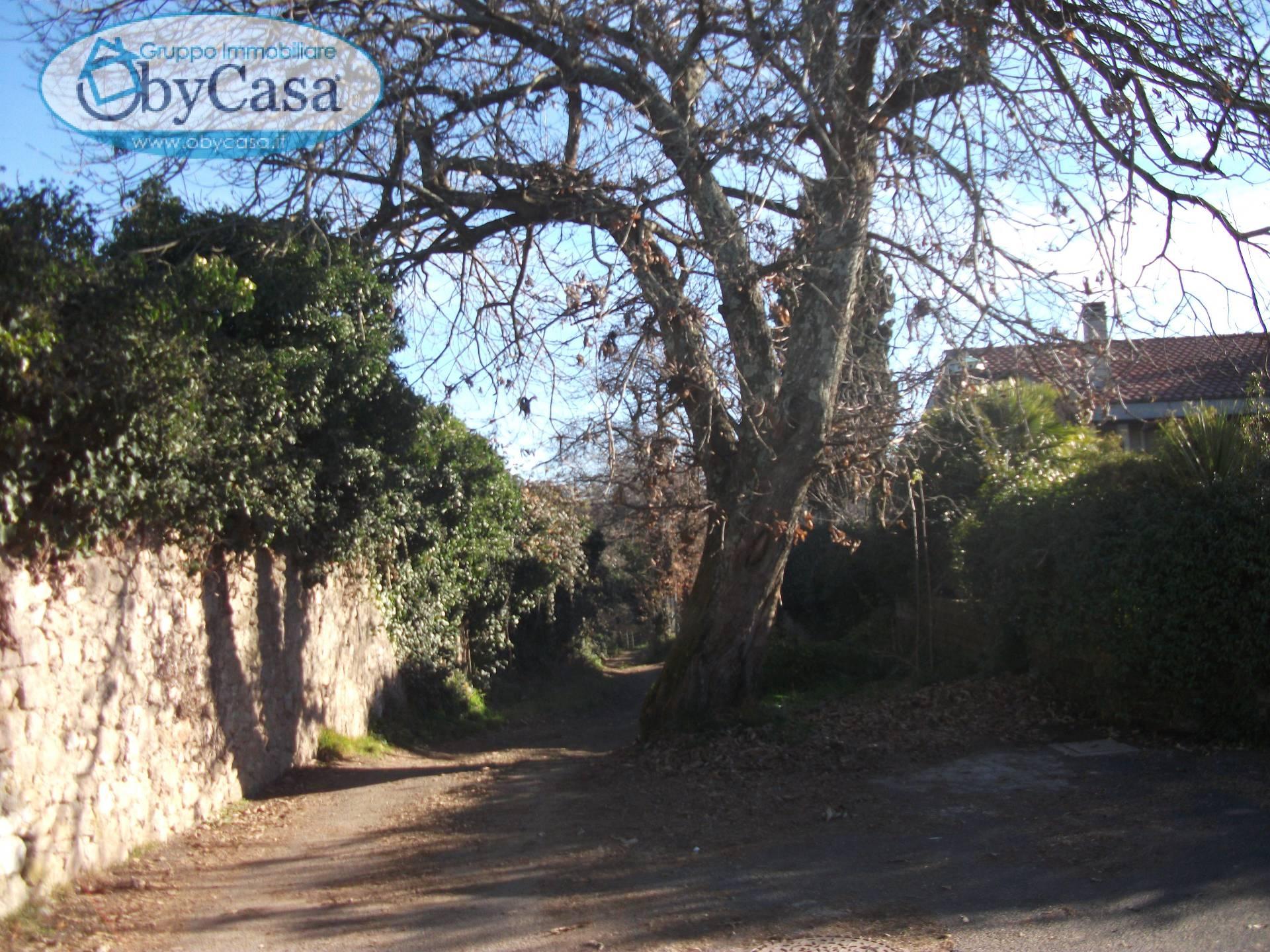 Terreno Agricolo in vendita a Oriolo Romano, 9999 locali, prezzo € 18.000 | CambioCasa.it
