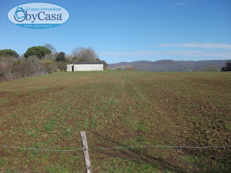Terreno Agricolo in Vendita a Canale Monterano
