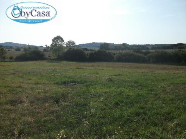 Terreno Edificabile Residenziale in vendita a Vejano, 9999 locali, prezzo € 39.000 | CambioCasa.it