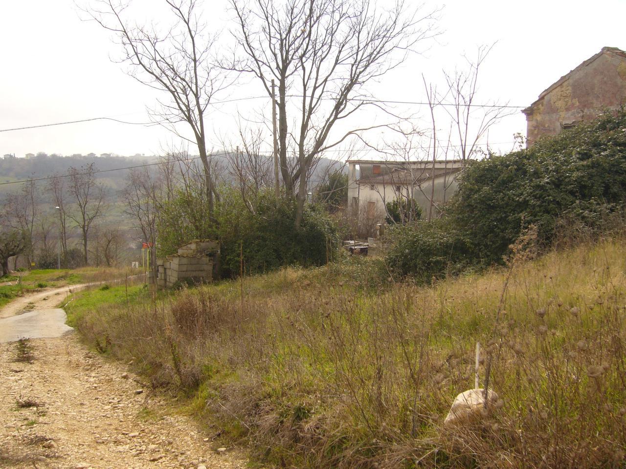Terreno vendita COLONNELLA (TE) - 7 LOCALI - 1500 MQ