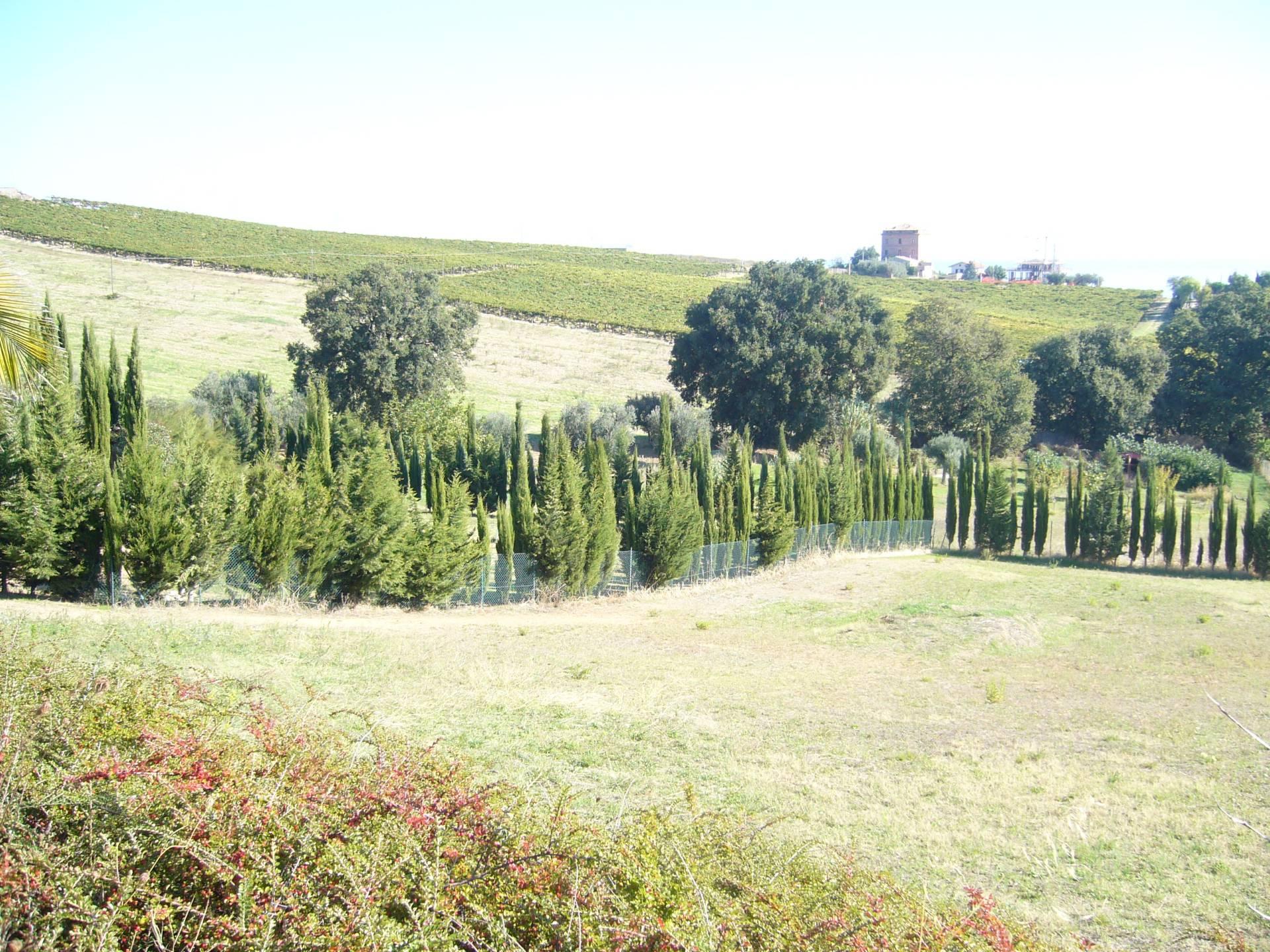 Terreno Edificabile Residenziale in Vendita a Colonnella
