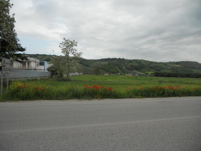 Terreno Edificabile Residenziale in vendita a Controguerra, 9999 locali, prezzo € 390.000 | CambioCasa.it