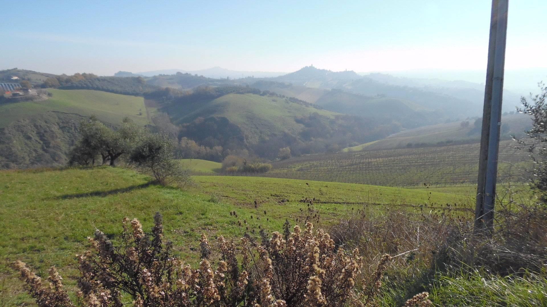 Terreno Edificabile Residenziale in vendita a Monsampolo del Tronto, 9999 locali, zona Zona: Monsampolo, prezzo € 40.000 | CambioCasa.it