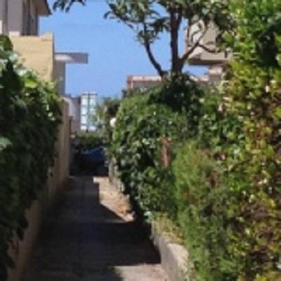 Bilocale Nettuno Via Dei Larici 4