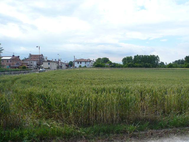 Terreno Edificabile Residenziale in vendita a Roncade, 9999 locali, zona Località: SanCipriano, prezzo € 119.000 | Cambio Casa.it