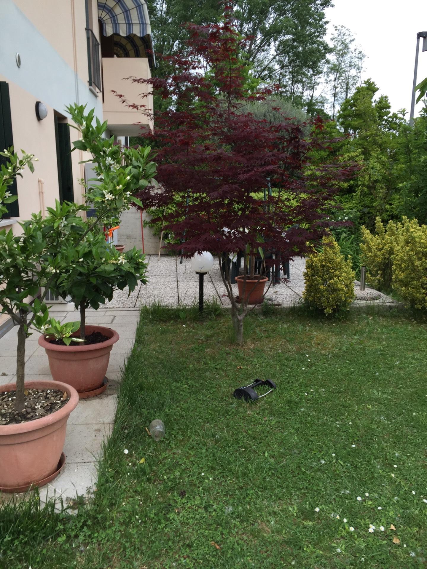 Bilocale Treviso Canizzano 8