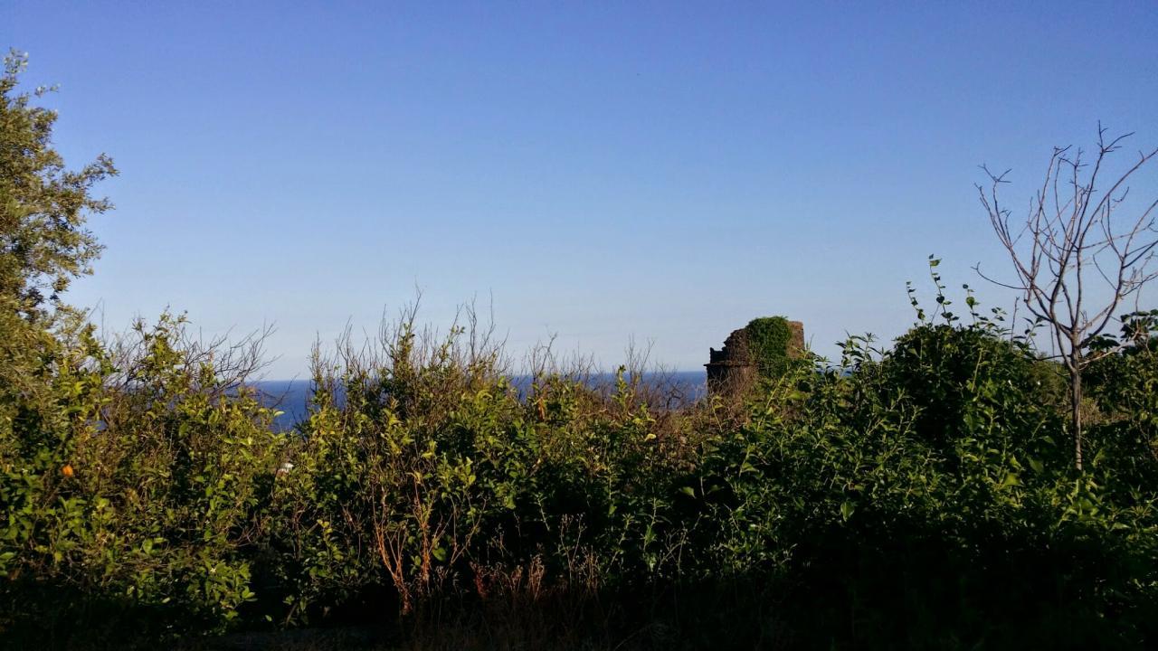 Terreno Agricolo in vendita a Aci Castello, 9999 locali, zona Località: AciCastello, prezzo € 79.000   Cambio Casa.it