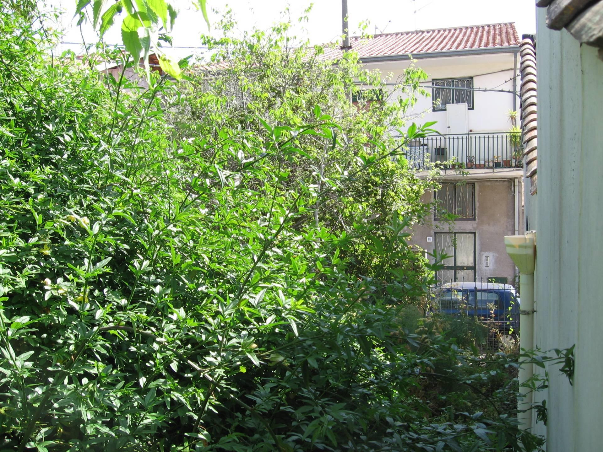 Bilocale Valverde Via Portiere 10