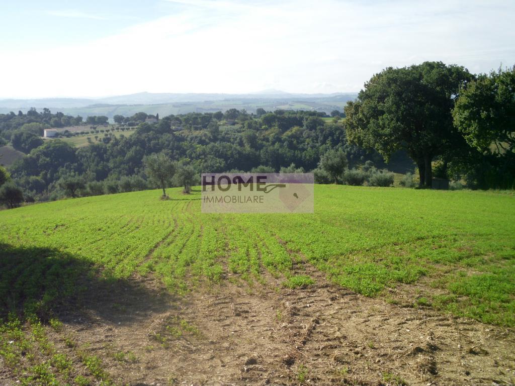 Terreno Agricolo in vendita a Pollenza, 9999 locali, zona Località: ContradaS.aLucia, prezzo € 140.000 | Cambio Casa.it