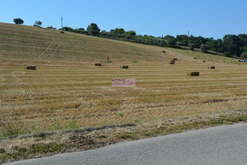 Terreno Agricolo in vendita a Corridonia, 9999 locali, zona Località: zonasemi-centrale, prezzo € 55.000 | Cambio Casa.it