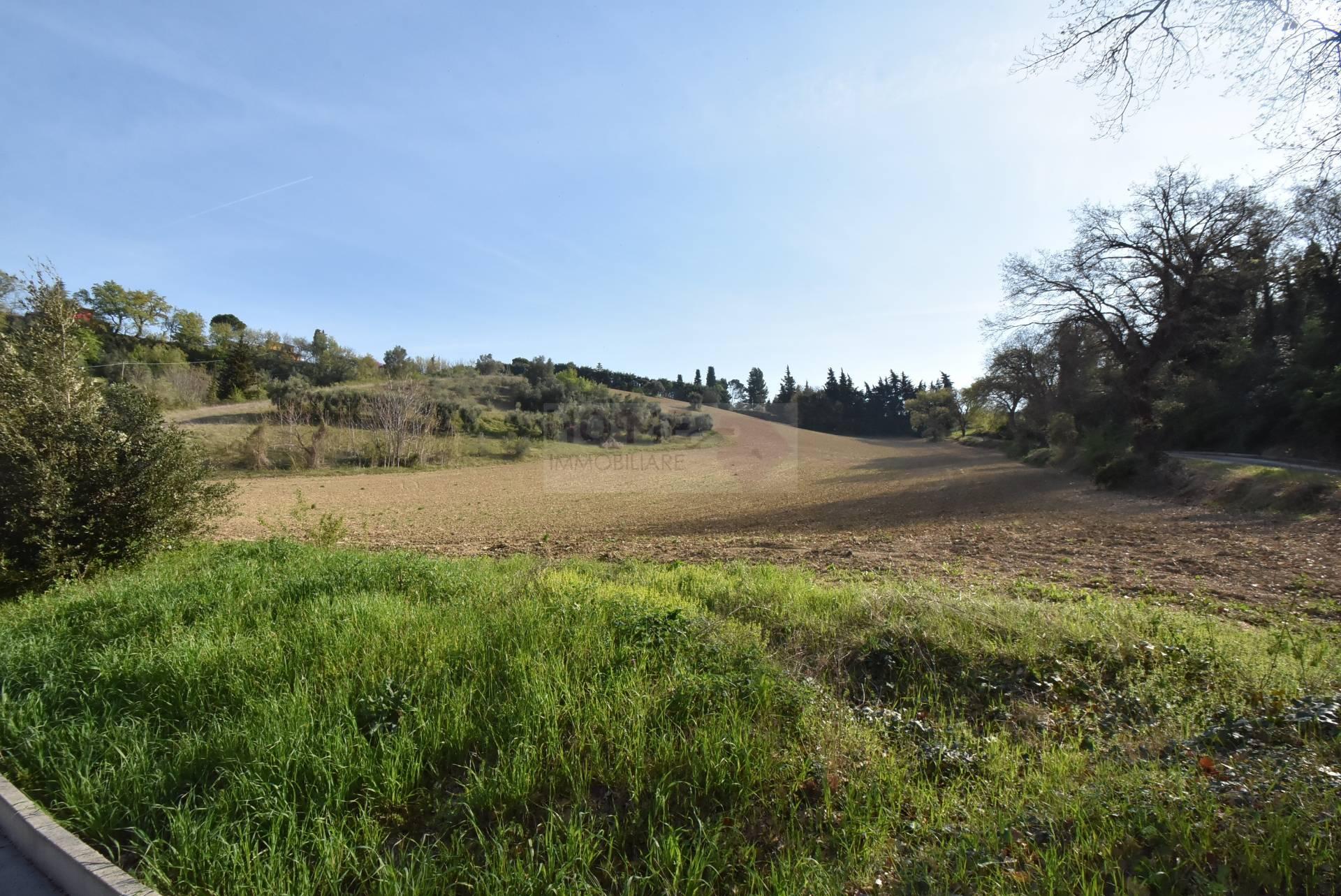 Terreno Agricolo in Vendita a Macerata