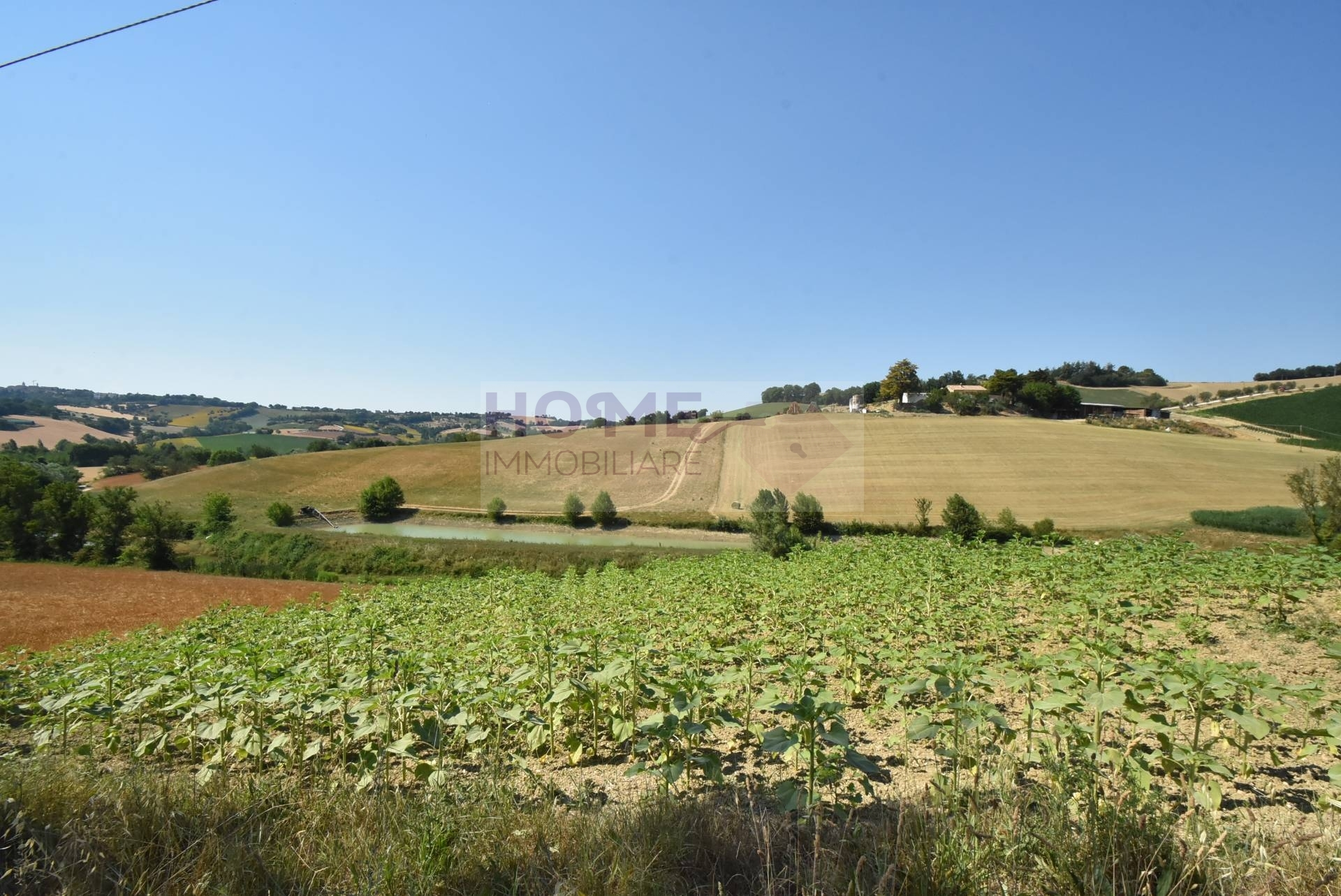 Terreno Agricolo in vendita a Corridonia, 9999 locali, prezzo € 30.000 | CambioCasa.it