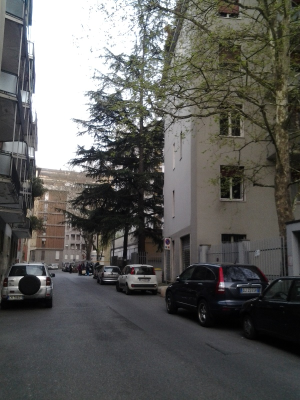 Appartamento in affitto a Piacenza, 3 locali, zona Località: Centrostorico, prezzo € 500 | CambioCasa.it