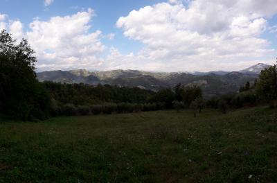 Vai alla scheda: Terreno Agricolo Vendita Ascoli Piceno