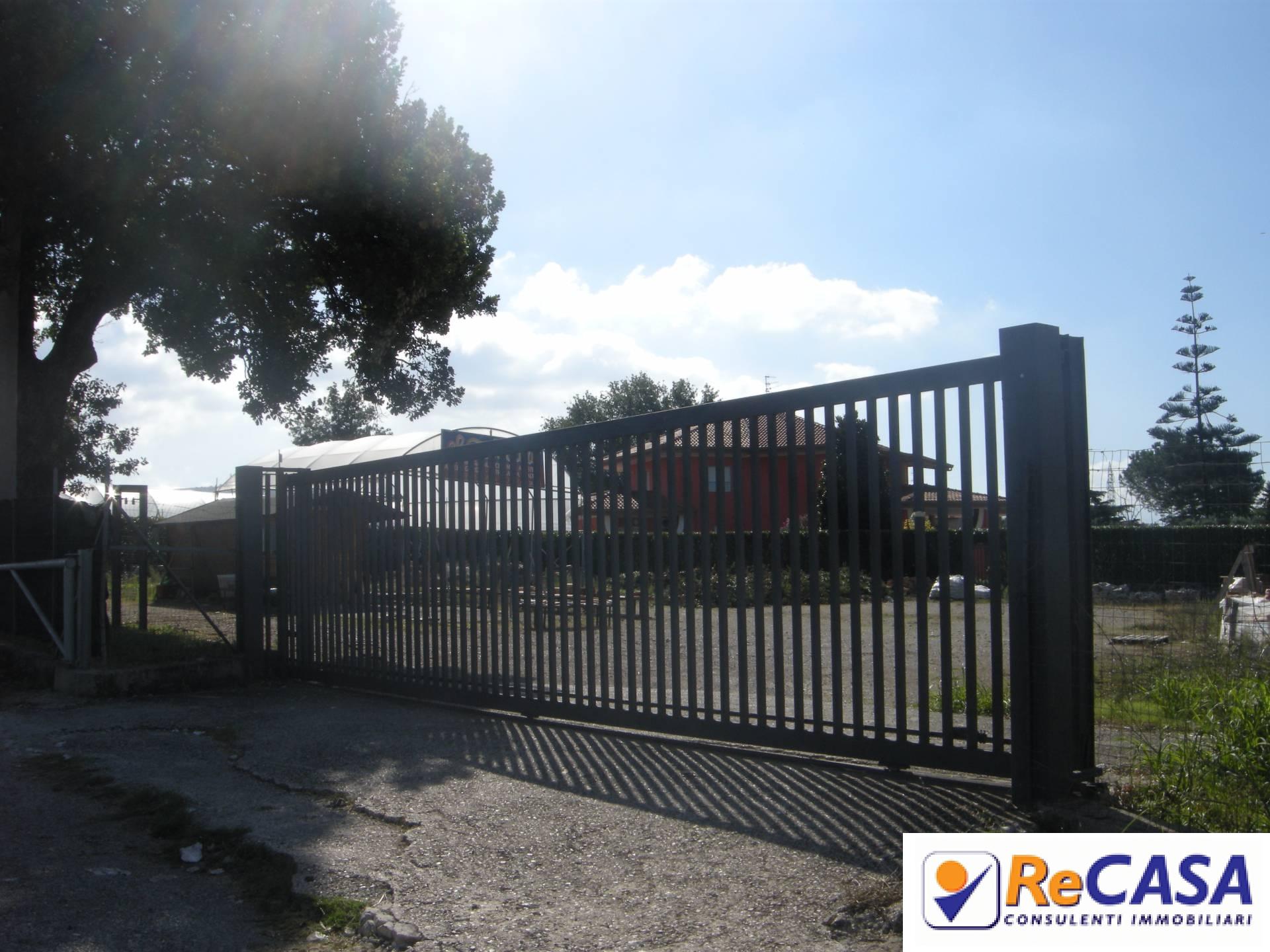 Terreno Agricolo in affitto a Montecorvino Rovella, 9999 locali, prezzo € 400 | CambioCasa.it
