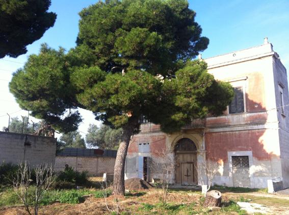 Terreno Edificabile Comm.le/Ind.le in Vendita a Bari